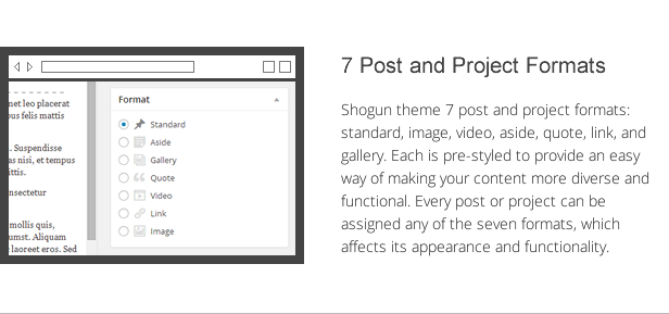 shogun features - post and project formats